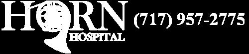 Horn Hospital