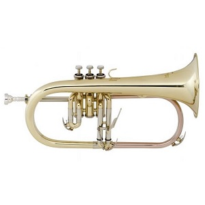 Used Instruments: Flugel Horn