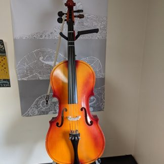 This 1/4 size cello would be a nice instrument for a beginning cellist.